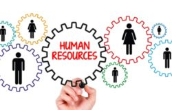 School Human Resource Management Software